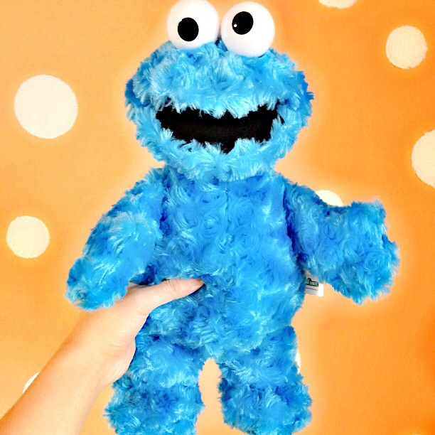 cookie monster typicalben