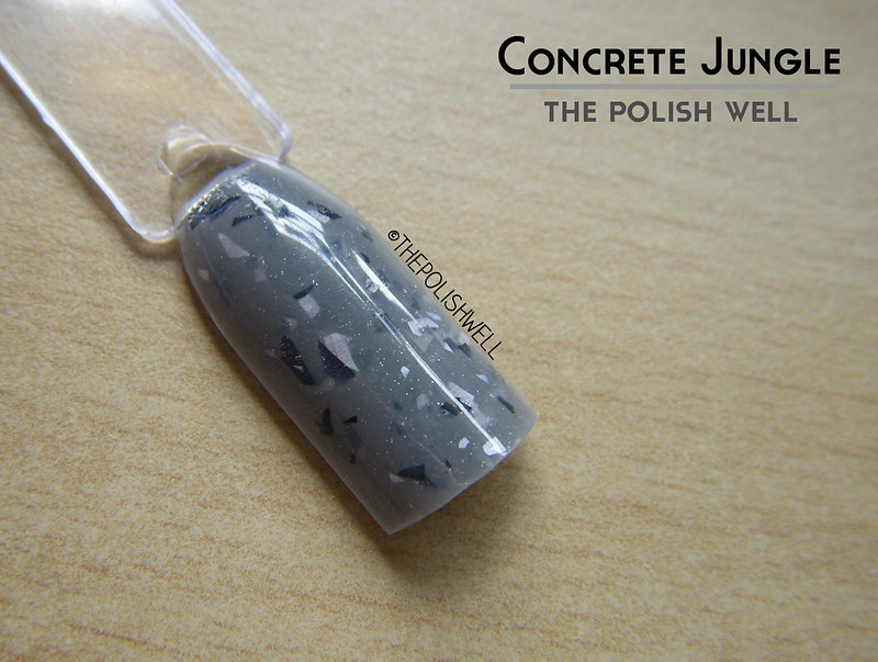 the-polish-well-concrete-jungle
