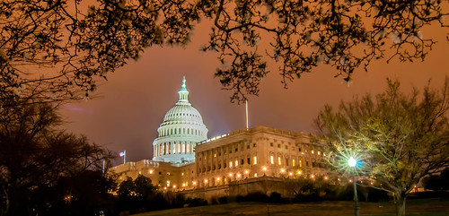 US Capitol Building in spring- Washington DC, United States by DigiDreamGrafix.com