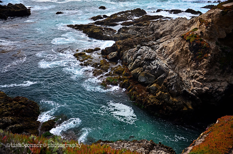 oceanDSC_3650blog