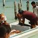 Isla Mujeres aka Island of the Women Quintana Roo Mexico July 1994 023 Fresh Fish por photographer695