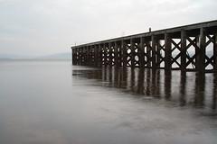 The Pier 6/52