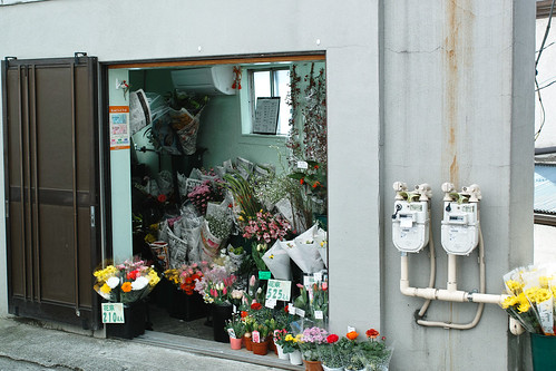 近所のお花屋さん by leicadaisuki