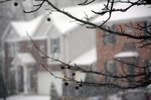 LOTS-of-snow