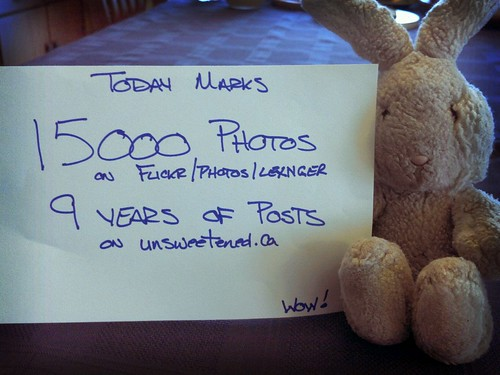 Today: 15000th photo to Flickr, and my 9th blogiversary.