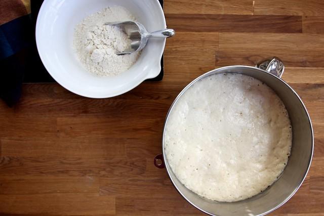 Buttermilk Beignets
