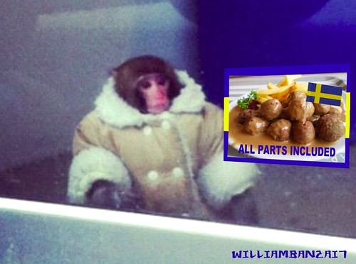 IKEA MONKEY by Colonel Flick/WilliamBanzai7