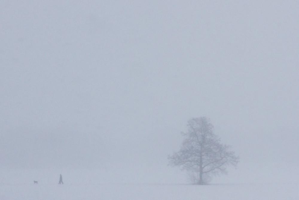 Lumipyryssä