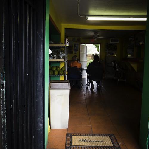Treelion's Homey Caribbean Interior