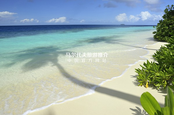 鲁滨逊岛[Robinson Club Maldives]沙滩