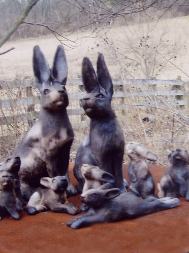 March Hares by Jeanne Stevens-Sollman