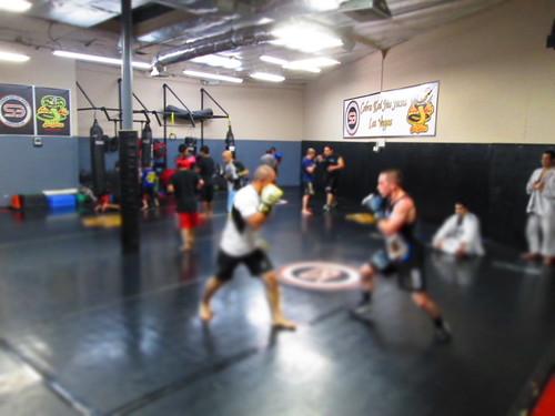 3.5 - Jiu Jitsu Traning