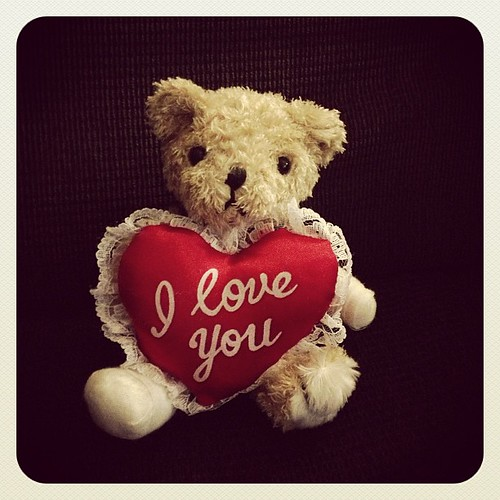 Bandaged Bear Appeal Photoaday - Day 9 - Love! #bbaphotoaday #bandagedbear