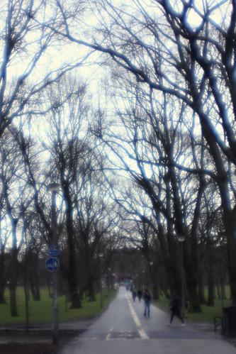 middle meadow walk