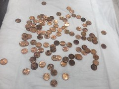 Pooches pennies