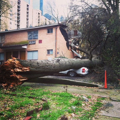 Tree down in Midtown Atlanta