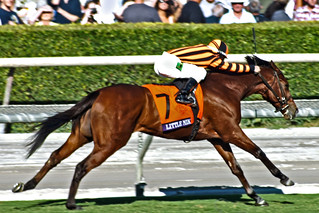 Little Mike winning the Breeders Cup Turf 2012
