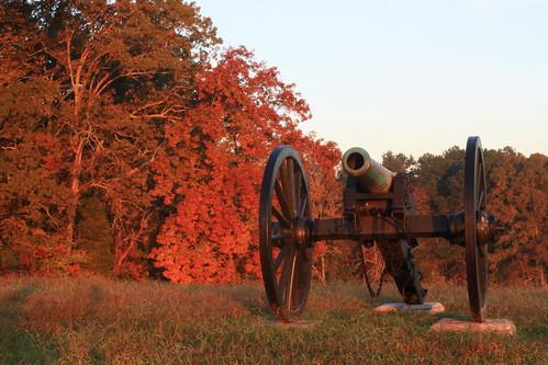 Fall cannon