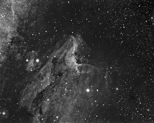 Pelican Nebula - IC5070 by Mick Hyde