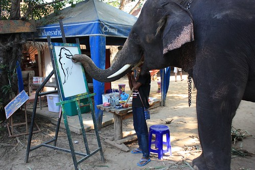 elephant painting his self portrait