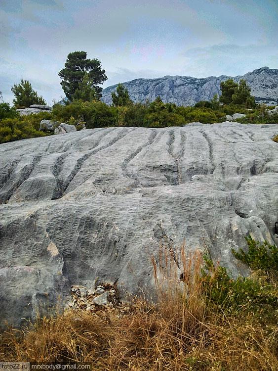 09-Wild-Makarska