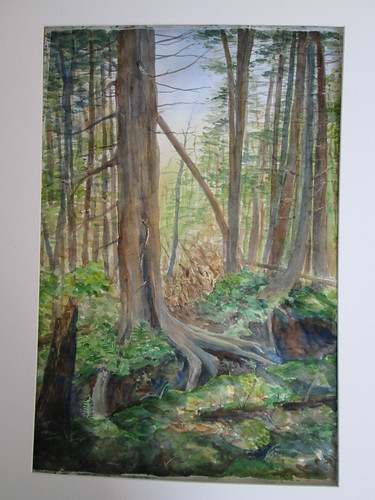 63 Eagle Mtn Cedars by luv2draw
