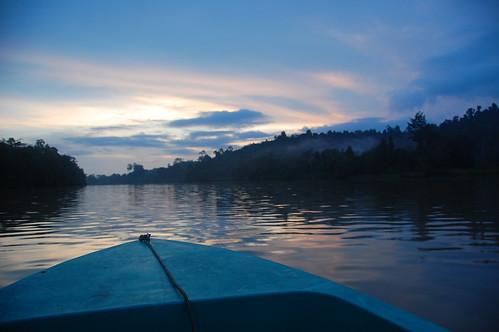 Sukau and the Kinabatangan River - Sabah, Borneo