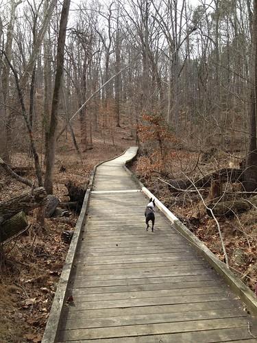 Charlie's First Trip to Poco Feb 2013 (67)