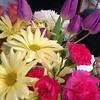 Fresh flowers in the house, like a grown up. #lovelovelove