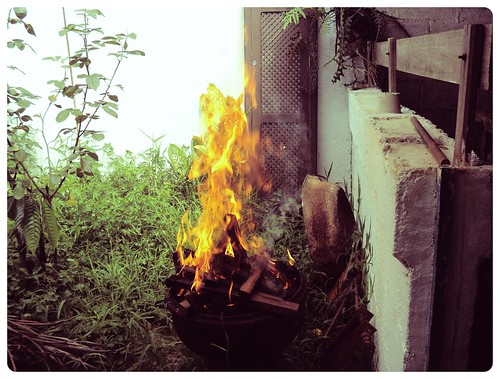 40/365 - Fire