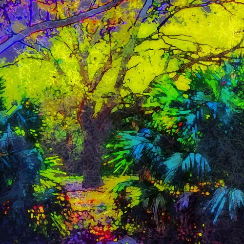 trees abstract photomanipulation sunrise square digitalart hypothetical wardpark artdigital arteffects shockofthenew sharingart awardtree vanagram crazygeniuses netartii