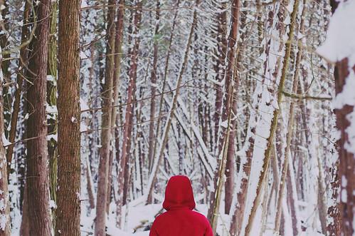 winter wonderland by Stephanie Loy Son
