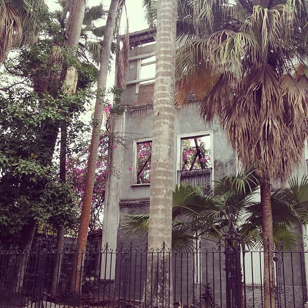 A decadência tropical tem o seu charme. #pty
