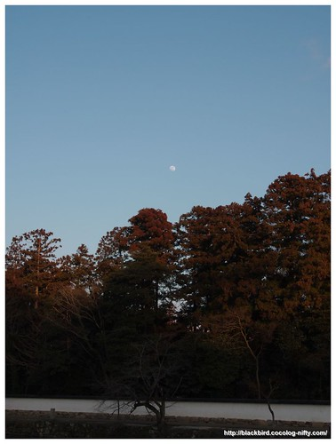 Moon #01