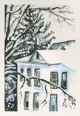 Spruce Behind 2-Story House in Winter