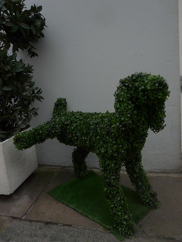 Notting Hill Topiary Dog