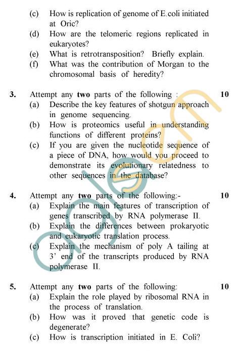 UPTU: B.Tech Question Papers -BT-406 - Genetics & Molecular Biology