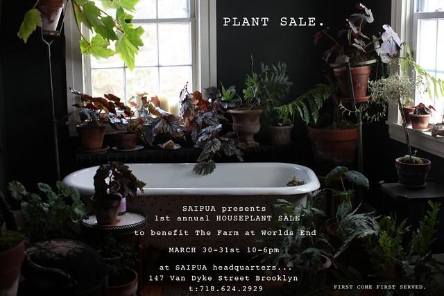 plant_flyer