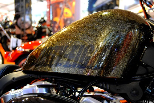 Harley Davidson Sporster 1200 Forty-Eight - Cagnes sur mer 2013