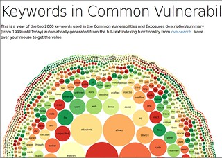 Keywords in Common Vulnerabilities and Exposures
