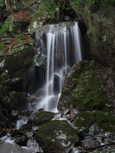 朝日滝一の滝左側の滝 2011.8.6