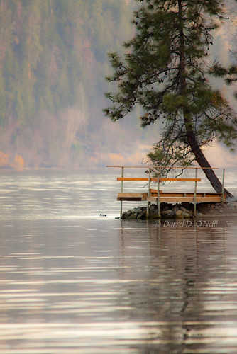 trees brown mountain lake canada mountains reflection tree green nature water pine forest docks reflections landscape grey reflecting pier dock bc okanagan piers gray lakes scenic pines valley oyama forests lakecountry