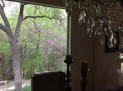 Spring Outside
