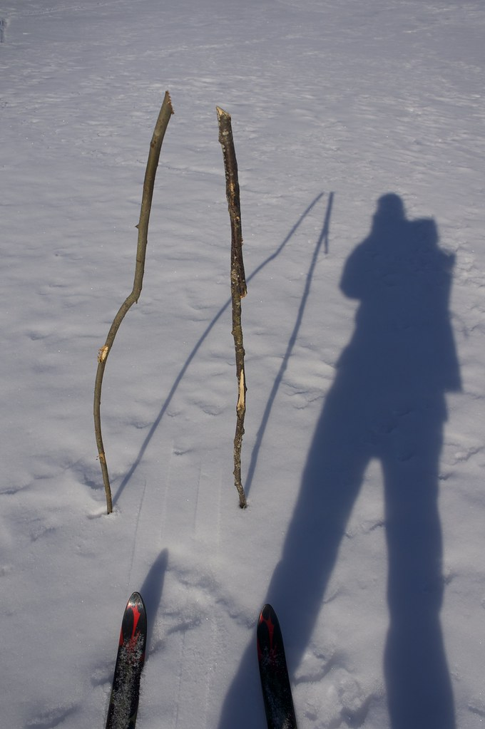 Skiing Poles, improvised
