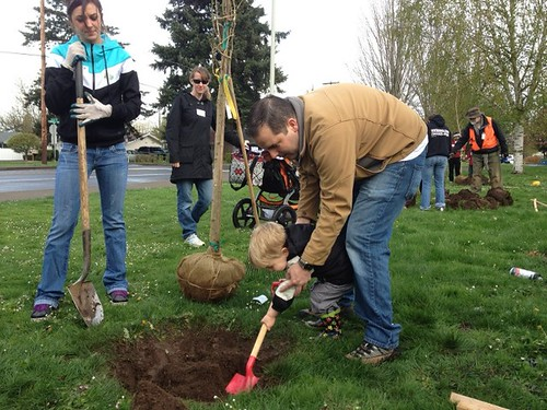 Salem Volunteer Tree Planting