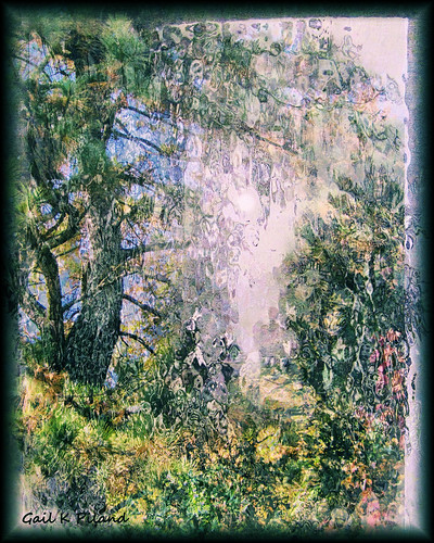 trees texture pine forest photoshop garden painting landscape eden soe hypothetical autofocus thegalaxy flickraward theunforgettablepictures theperfectphotographer thebestofday sharingart gailpiland ringexcellence allnaturesparadise netartii flickrstruereflection1 rememberthatmomentlevel1 rememberthatmomentl1