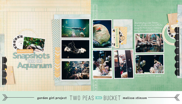 snapshots from the aquarium w banner.jpg