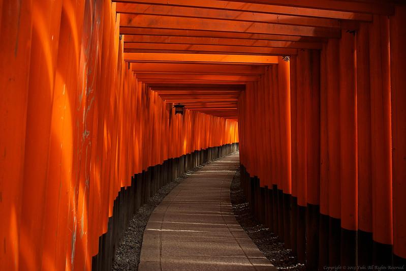 torii gate #1