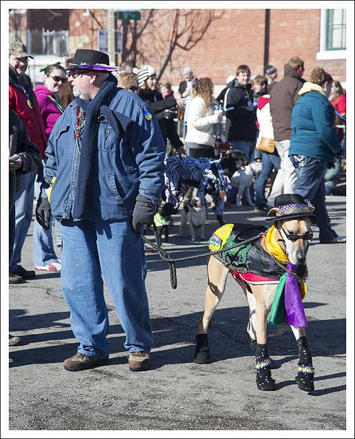 Soulard Pet Parade 2013-02-03 16