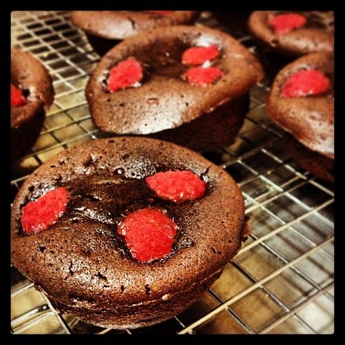 Gooey nutella raspberry cakes
